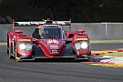 IMSA Bomarito takes brilliant pole for Mazda