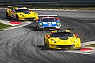 IMSA Corvette racers confident but wary ahead of showdown