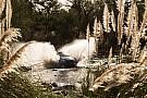 WRC Argentina WRC: Motorsport.com's driver ratings
