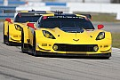 "Corvette Racing is ""world's best GT team"" says program manager"