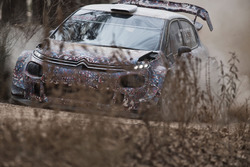 Craig Breen, Citroën C3 WRC 2017