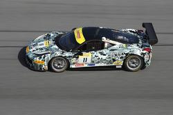 #11 Ferrari of Central Florida Ferrari 458: Lance Willsey