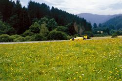 Ayrton Senna, Team Lotus Honda 99T