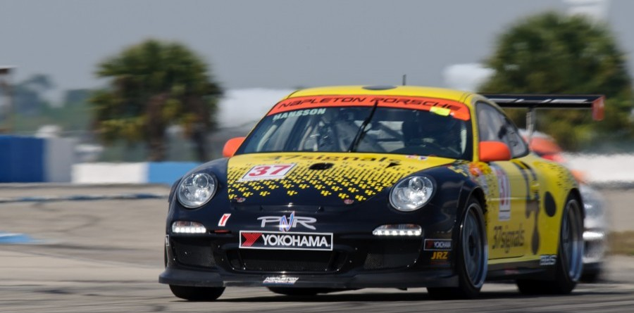 Porsche IMSA Team PNR Steps Up To ALMS GTC