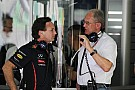 Red Bull has work to do to defend title - Marko