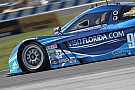 Fighting Fifth for Spirit of Daytona Racing in Rolex 24