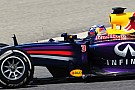 Red Bull looks to 'survive' Melbourne