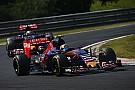 Toro Rosso seguro de que el quinto lugar aún es posible