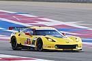 Magnussen and Corvette Racing want more COTA success