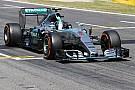 Nico Rosberg geeft droom niet op: 'Niets te verliezen'