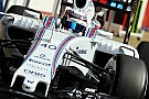 Lynn stays on as Williams development driver