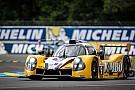 Le Mans Lammers over nieuw Le Mans-avontuur: