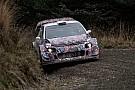 WRC Meeke: 2017'de üstün bir takım olmayacak