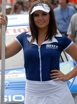 Norbert Michelisz's grid girl