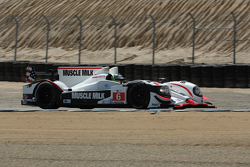 #6 Muscle Milk Pickett Racing HPD ARX-03a: Lucus Luhr, Klaus Graf