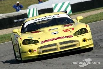 #87 Vechicle Technologies Viper: Jan Heylen, Tony Ave