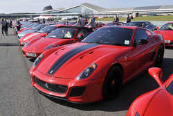Ferrari F599