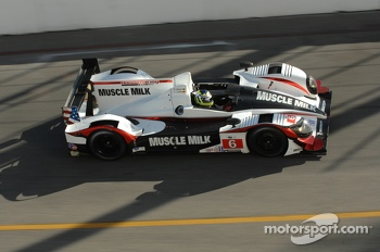 #6 Muscle Milk Pickett Racing HPD ARX-03a: Klaus Graf, Lucas Luhr