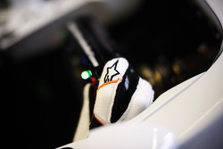 The glove of Adrian Sutil, Sahara Force India VJM06