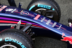Sebastian Vettel, Red Bull Racing RB10 front suspension and nosecone detail