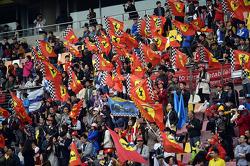 Ferrari fans and flags.
