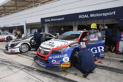 Tom Coronel, Cevrolet RML Cruze TC1, Roal Motorsport