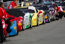 Ferraris lined up