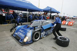 Pitstop for #19 Finlay Motorsports BMW Riley: Michael McDowell, Memo Gidley