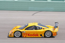 #77 Feeds The Need/ Doran Racing Ford Doran: Memo Gidley, Jorge Goeters