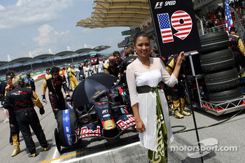 Grid girl of Scott Speed