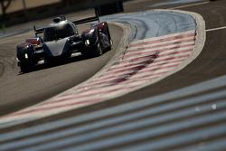 #21 AF Racing BR01 Nissan: Maurizio Mediani, David Markozov, Nicolas Minassian