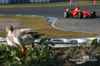 Michael Schumacher, Test Driver, Scuderia Ferrari and a feathered spectator