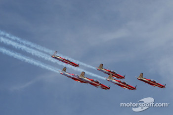 RAAF Roulettes, Air Display Team