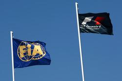 FIA and Formula 1  Flags