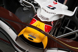 David Coulthard, Red Bull Racing, Wings For Life Car