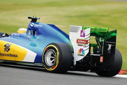 Marcus Ericsson, Sauber C35, mit FlowViz-Farbe
