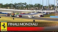 Daytona: Coppa Shell, Highlights