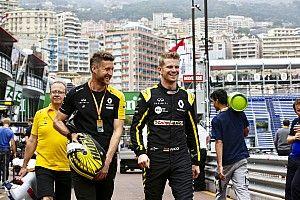 Hülkenberg és Zeus: az új F1-es kiskutya