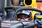 Formula 1 FIA, Halo'nun bir sonraki versiyonu için taslak hazırlıyor