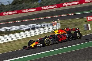 Tyre blister blunted Verstappen victory charge - Horner