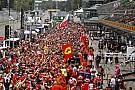 Képeken az óriási tömeg Monzából: Ferrari-mánia