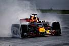 Teamchef: Formel-1-Pilot Max Verstappen hat einen