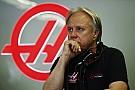 فورمولا 1 جين هاس