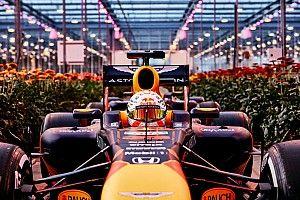 """Verstappen: """"No tengo intención de dejar Red Bull"""""""