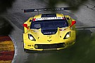 IMSA Jan Magnussen: I'm clinging on to GTLM points lead