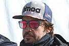 IMSA 24h Daytona: Alonso-Effekt geringer als beim Indy 500