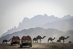 داكار 2020: فلسفة جديدة ومسار بطول 8 آلاف كيلومتر في المملكة العربية السعودية