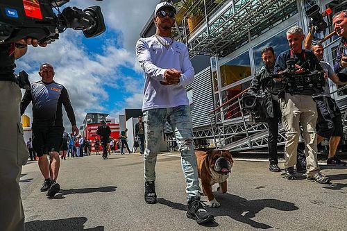 """""""El paddock de la F1 no es una granja, pero todo el mundo es libre"""""""