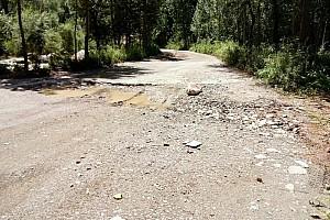 WRC中国站被取消,2017年见?