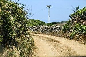 WRC, Rally Italia Sardegna: PS7 cancellata a causa di un'emergenza medica